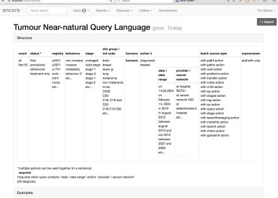 Tumour Near-natural Query Language