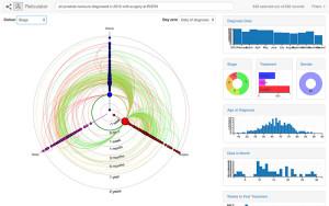 health data insight prostate audit