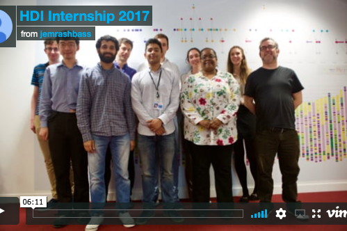 Interns enjoy their summer at HDI